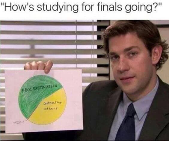 study for finals